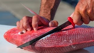 How To Filet And Prepare Your Fish