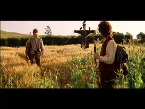 Lord Of The Rings Why Does Frodo Leave