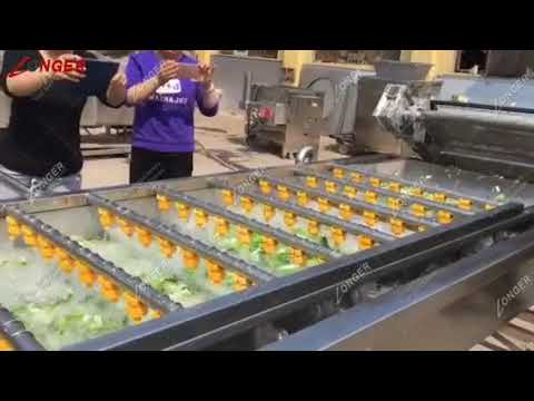 Industrial Fruit And Vegetable Washing And Drying Machine