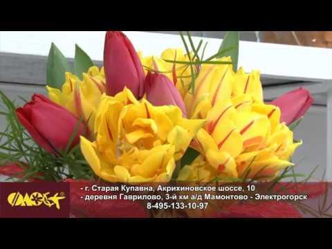 Садовый центр «Флос» в Старой Купавне открыл весенний сезон акций!