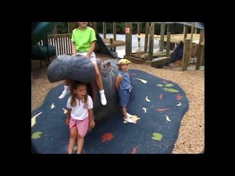 Cedarmont Kids- Bible Songs Volume 1