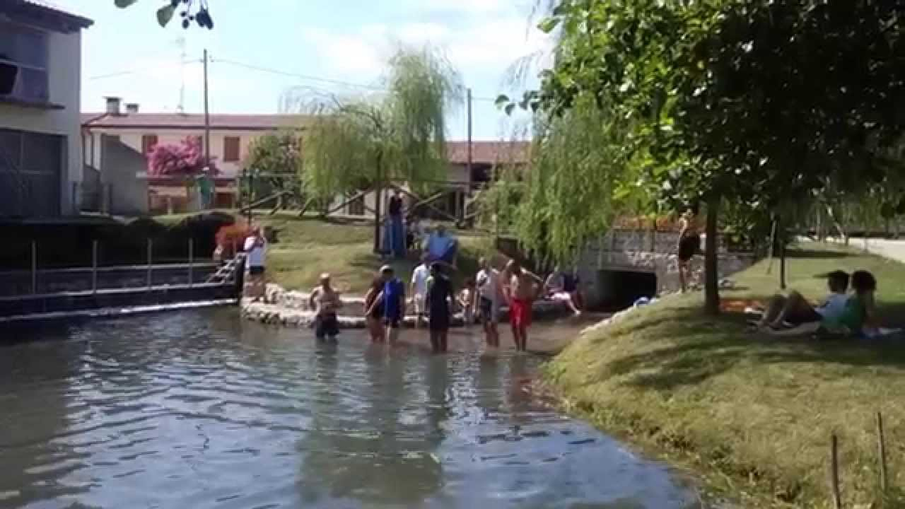 Il big jump sul fiume musestre visto da romeo scarpa contratto di fiume meolo vallio musestre - Il giardino sul fiume ...