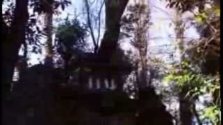 羽田神社 浅間神社は崩れて登れない  パワースポット Japan shrine video