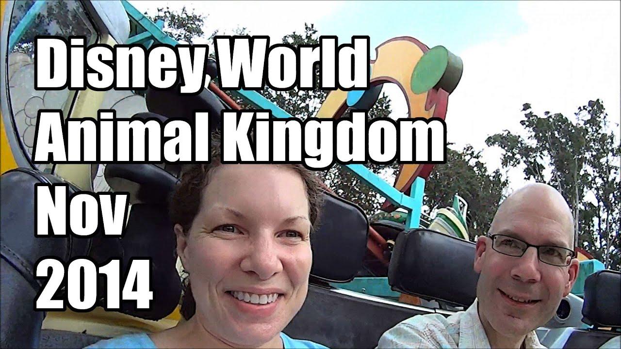 disney world vlog day 3 part 2 november 2014 animal