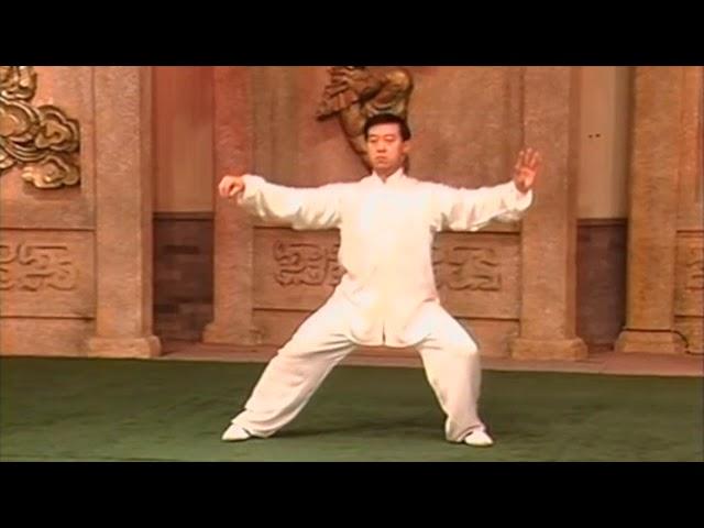 Chen Zheng Lei - Tai Chi style Chen Laojia Yilu  [陈氏太极拳老架 Taijiquan style Chen]