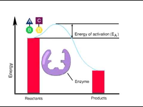 how to work out activation energy