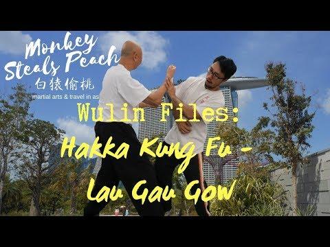 Hakka Kung Fu of Lau Gar Gow (Liu Jia Jiao) - Martial Arts of Singapore ep4