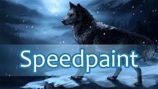 Tsar (Wolf Speedpaint)