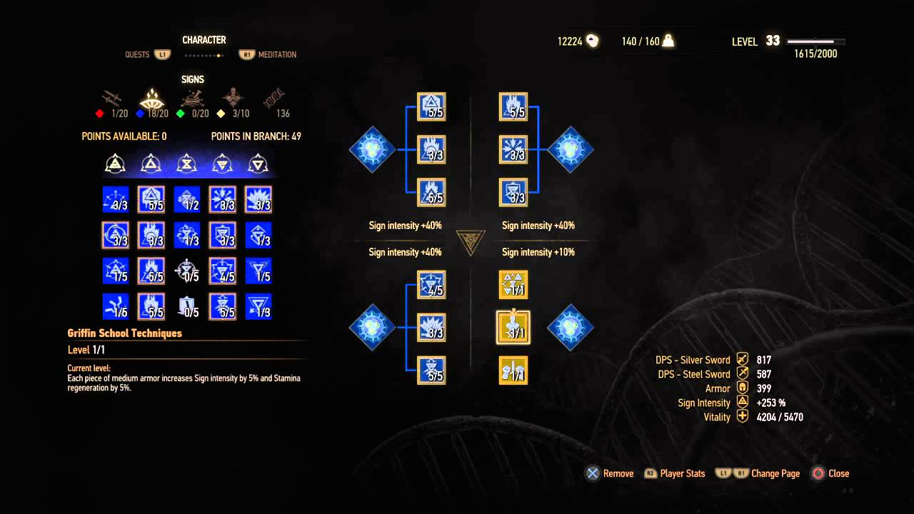 The Witcher  Mage Build