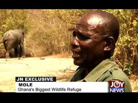 Mole National Park - Joy News Exclusive (15-9-15)