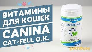 видео витамины канина