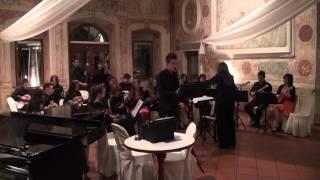 Koncert za klarinet II stavek