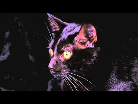 BenZel & Cashmere Cat feat. Juicy J - Four