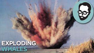 Why Whales Explode | Random Thursday