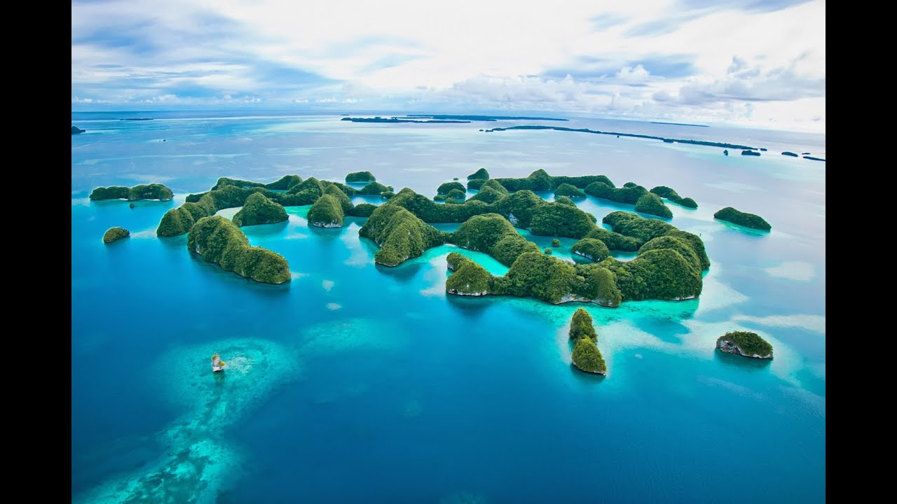Dive Palau, This is How You Should Do It! - YouTube
