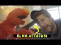 Elmo Attacks Him! Ft. David Dobrik, Josh Peck, & Jason Nash video