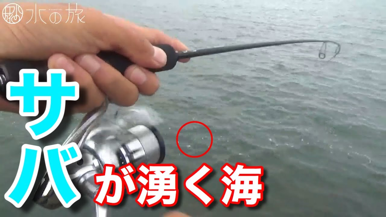 【大量にサバが湧いてます】名古屋からたった一時間!! 超手軽な釣りで、家族で短時間で楽しめるサバ釣り。【水の旅#2】