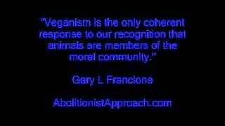 Pt 8 Talking With Non-Vegans About Veganism: 5 Principles