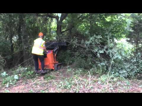 Small Land Clearing Job - Blade Runners, LLC
