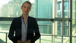 Alice Weidel: Warum ließ sie Thorsten Schulte nach diesem Video fallen?
