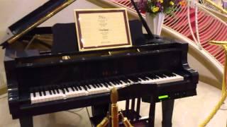 宝塚大劇場の自動演奏ピアノ 雪組公演 JIN-仁-