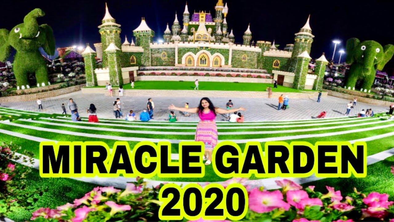 Dubai Miracle Garden 2019 2020 Miracal Garden 2020 Dubai Miracle Garden Youtube