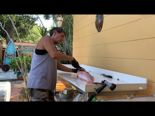 How to Fillet Red Snapper