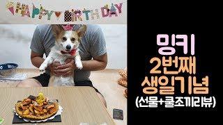 [김밍키TV] 2번째 생일을 축하해 우리 밍키