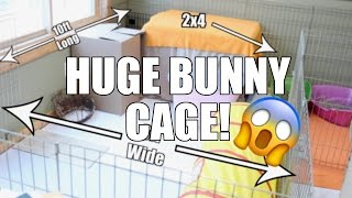STERLING'S HUGE CAGE - Bunny Cage Tour