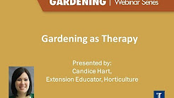 Four Seasons Gardening Series- Gardening as Therapy