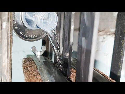 Генеральное ТО лифтов: чистка кабин и мойка тяговых ремней