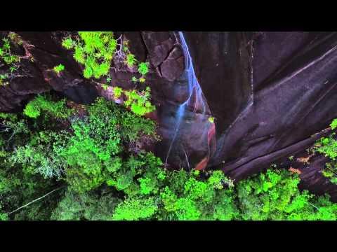 Copolia Waterfall - Seychelles