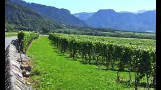Der Alpenrhein - via Rhenena / Ostroute