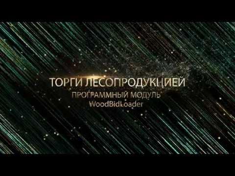 Как работать в программном модуле WoodBidLoader Белорусской универсальной товарной биржи