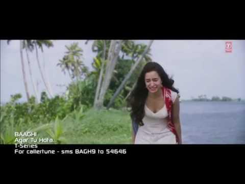 Bunga Desa Versi India Smule Syariful_3 Baaghi India Movie