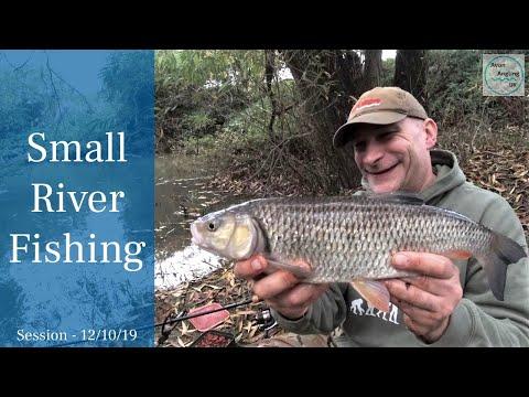 Small River Fishing - Chub - 12/10/19 (Video 130)