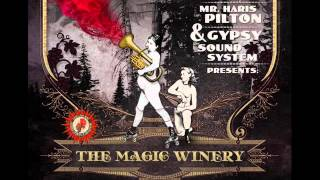 Mr. Haris Pilton & Gypsy Sound System - Suncocret
