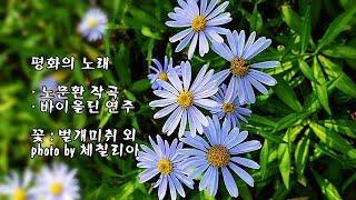 평화의 노래/노문환 작곡, 바이올린 연주 & photo by 체칠리아