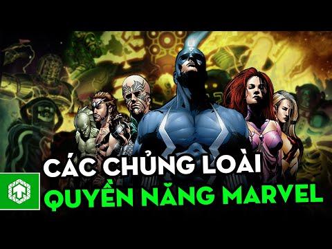 Tổng hợp các chủng loài quyền năng nhất Marvel Comics   Marvel   Ten Tickers