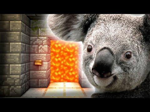 Koala does Traps - Door Prank