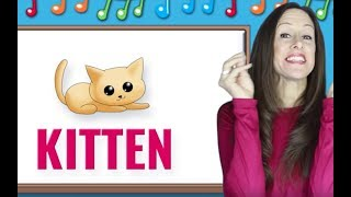 Phonics | The Letter K | Signing for Babies ASL | Letter Sounds K | Patty Shukla