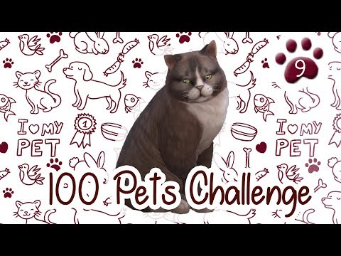The Sims 4 Indonesia : 100 Pets Challenge - Festival Humor~ 🐾9