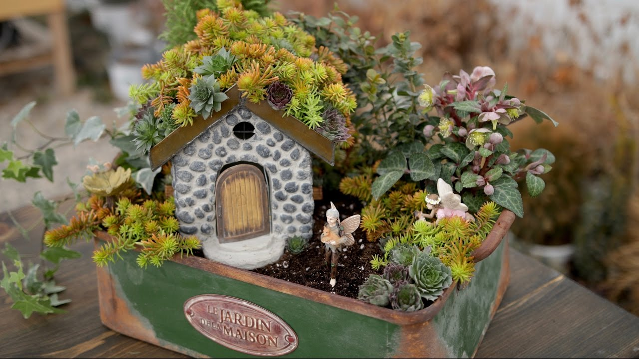 Succulent Rooftop Fairy Garden Garden Answer Youtube