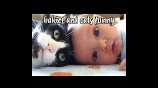Baby and Cat Fun and Fails funny videos