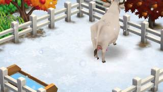 Chianina Cow - FarmVille 2