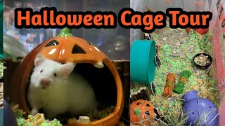 Hamster Bin Cage Set Up and Tour | Halloween Themed Cage Tour
