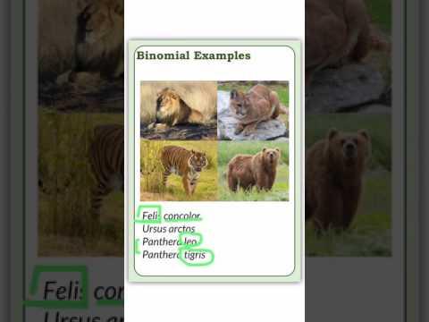 Binomial Nomenclature - Zoology #4