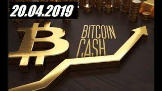 Криптовалюта BCHUSD - 20.04.2019