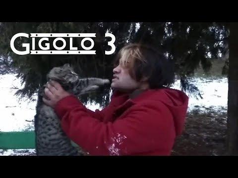 Gigolo 3 (Komédia 2018)
