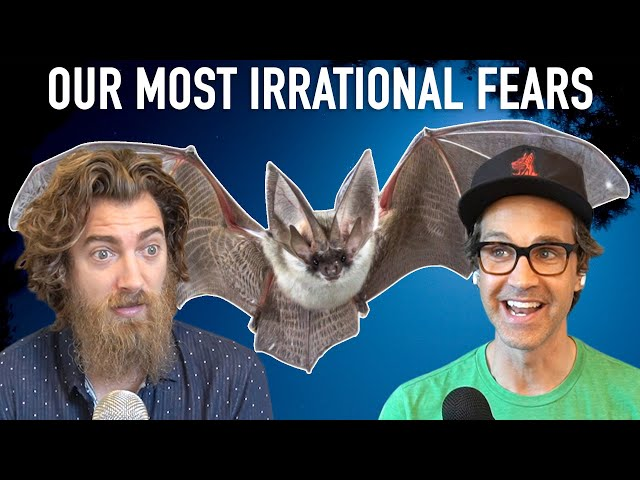 Our Most Irrational Fears